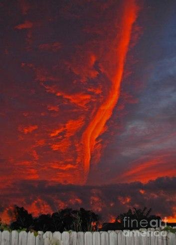 royal-sunset