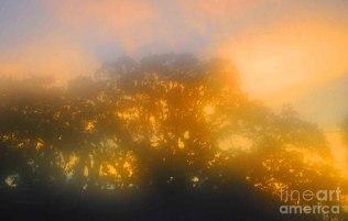 sunset-mocks-sunrise