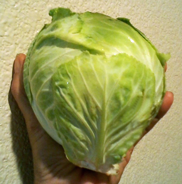 Baby-Cabbage-Head