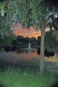 Lake Play at night.