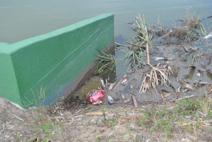 Lake Play Trash